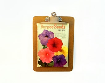 Burpee Seed Catalog 1955 Petunia On The Cover - 127 Pages Of Flower And Vegetable Illustrations