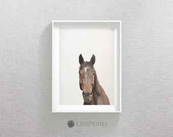 Horse Photo, Brown Horse, Nature Animal, Brown Horse Art, Animal Wall Art, Wilderness Print, Horse Printable Artwork, Horse Print Wall Art