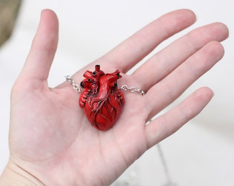 Anatomical Heart Necklace Human Heart Necklace Red Heart Pendant Organ Necklace Anatomy Jewelry