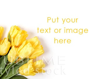 Styled Stock Photography / Spring Background / Stock Image / Flowers / Floral Background / Styled Flowers / Tulips / Easter / StockStyle-654
