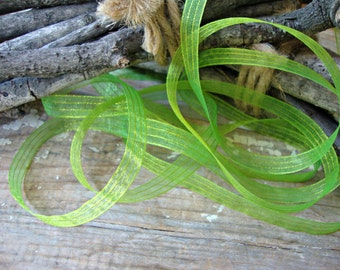 2 Yards - Parrot Green and Yellow Iridescent Sheer Stripe Ribbon