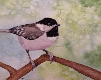 Chickadee, greeting card
