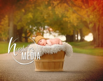 Newborn, Baby, Toddler, Child, Basket Outdoor Fall Photography Digital Backdrop Prop for Photographers at Park - with PNG Coverup Layer
