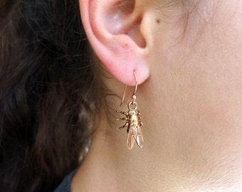 Drosophila Fruit Fly Earrings - Science Jewelry