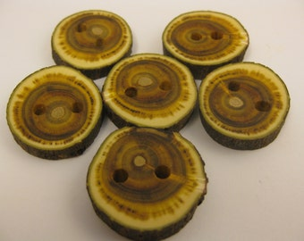 "Reclaimed ""Mystery"" Wood Buttons 6 Eco Friendly Hand Made Wood Buttons 1"" Rustic Buttons M1"