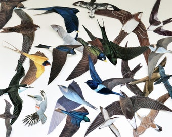 Flying birds cut-outs for collage / decoupage / scrapbooking / altered art / paper craft / junk journal /smashbooks