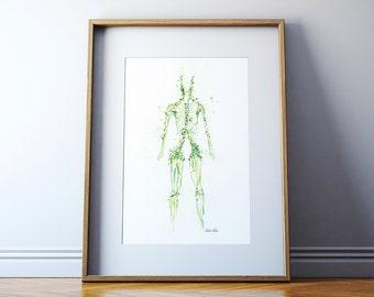 Lymphatic System Watercolor Print - Body System Watercolor Print - Anatomy Art - Medical Art