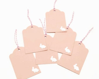 Easter Gift Tags, Happy Easter Tags, Easter Bunny Tags, Easter Favor Tags, Easter Hang Tags, Pink Tags, Set of 6