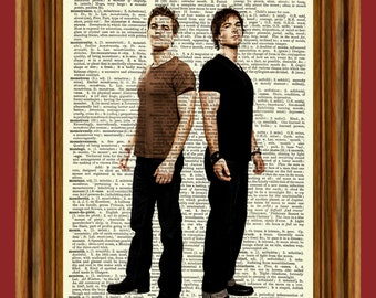 The Vampire Diaries (Stefan & Damon) Dictionary Art Print Poster