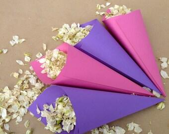 10 plain confetti cones. Choice of colours.
