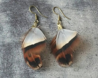Pair of earrings feathers
