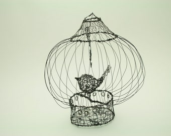 wire birdcage and bird