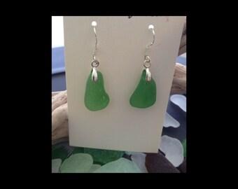 Vibrant Sea Green Seaglass Earrings Mazatlan Mexico