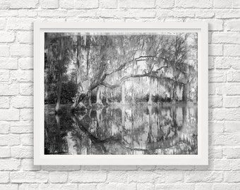 Charleston South Carolina - Magnolia Gardens - Circa 1912  - Black and White Photography - Landscape - Fine Art Photograph - Pond Reflection