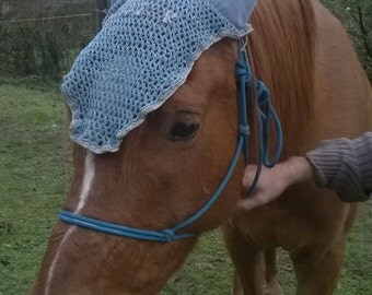 CAP for horse or pony