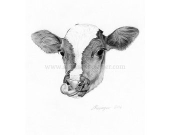 Cow Head Limited Edition Print
