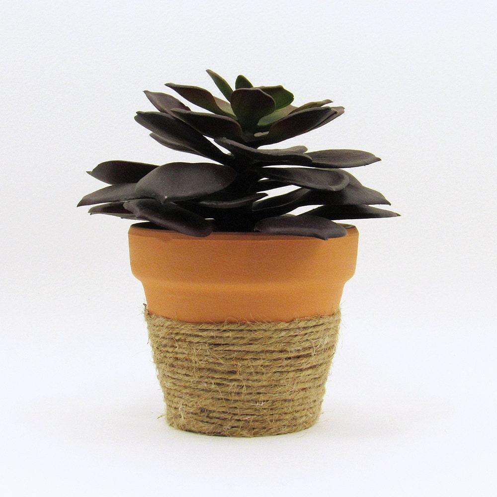 Terracotta Pot Succulent Planter Cute Rustic By