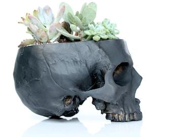 Skull Planter Large, Cactus Planter, Black Skull, Succulent Vase, Cactus Planter, Human Skull Decor