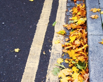 Autumn Leaves in London, England, United Kingdom, Travel Photography, Nature Photography, Print