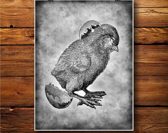 Chick Egg Print, Hatched Bird Decor, Easter Illustration, Gift Idea BW438