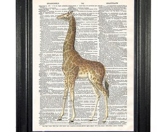 Giraffe. Upcycled vintage dictionary book page graphic image design print art