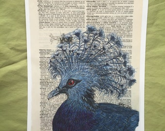 Victoria Crowned Pigeon on Dictionary Paper - Art Print