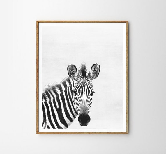 Zebra print nursery animal kids room modern art wall for Room decor zebra print