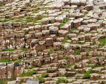 Rusted Pennies - Basalt Columns - Giant's Causeway - Northern Ireland - UK - Photo - Print