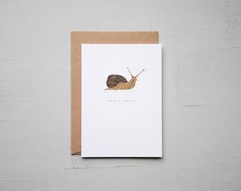 Snail Mail - Snail Card - Late Card - Funny Card - Birthday Card - Love Card - Note Card - Blank Card - Animal Card - Cards