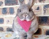 Red star bandana / neckerchief, pet rabbit bandanas, pet rabbit accessories, pet rabbit clothing, pet cat bandana, pet cat collar
