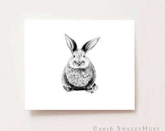 Nursery animal art print, Bunny- Fine art Giclee print, charcoal drawing, black and white, baby animal print, nursery art, nursery decor