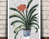 House plant print Plant decor Flower poster Watercolor print RTA1639