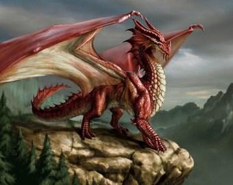 Dragon # 20 - 8 x 10 - T Shirt Iron On Transfer