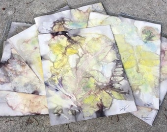 Art Paper  or Photo Mat - BoiLeD BooKs - ECO PRINT - For Framing, Journaling, Mixed Media, Creating