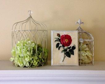 Spring Rose Decorative Plaque