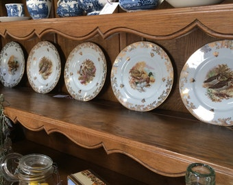 Set of five beautiful Limoges porcelaine plates