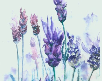 Print Of A Watercolour Of Lavender Flowers