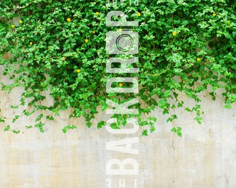 Large Photography Backdrop - Vines - 5'x5', 5'x6', 5'x7', 5x10'