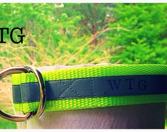 WildThingsGear Reflective Dog Collar (Slip collar)
