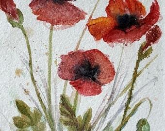 Poppies original watercolor painting