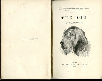 Antique Illustrated Book, The Dog, By William Youatt, 1879