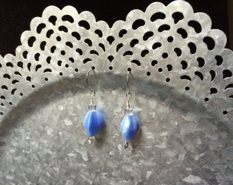 Blue Beaded Earrings with Embellished Silver Accents
