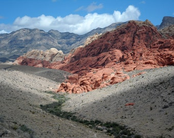 A Red Rock View