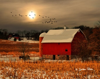 Two Red Barns # 39