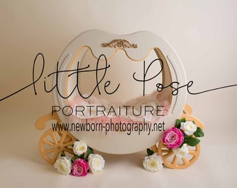 Little Pose ~ Carriage Newborn Digital Background High Res jpg file