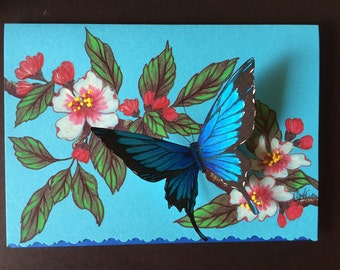 Ulysses butterfly drawing - photo#15