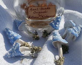 Magic Fairy Toadstools