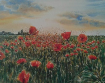 Painting watercolor Poppy Fields.
