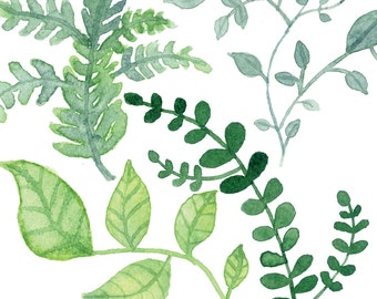 Foliage Watercolor Print