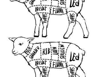 Cut Pig Set Hand Drawn Outline 447015517 likewise 50 also Wallis Horse Meat Chart moreover All About Goats Guide To Trimming Goat as well Dairy Goat Body Parts Diagram. on goat meat cuts diagram
